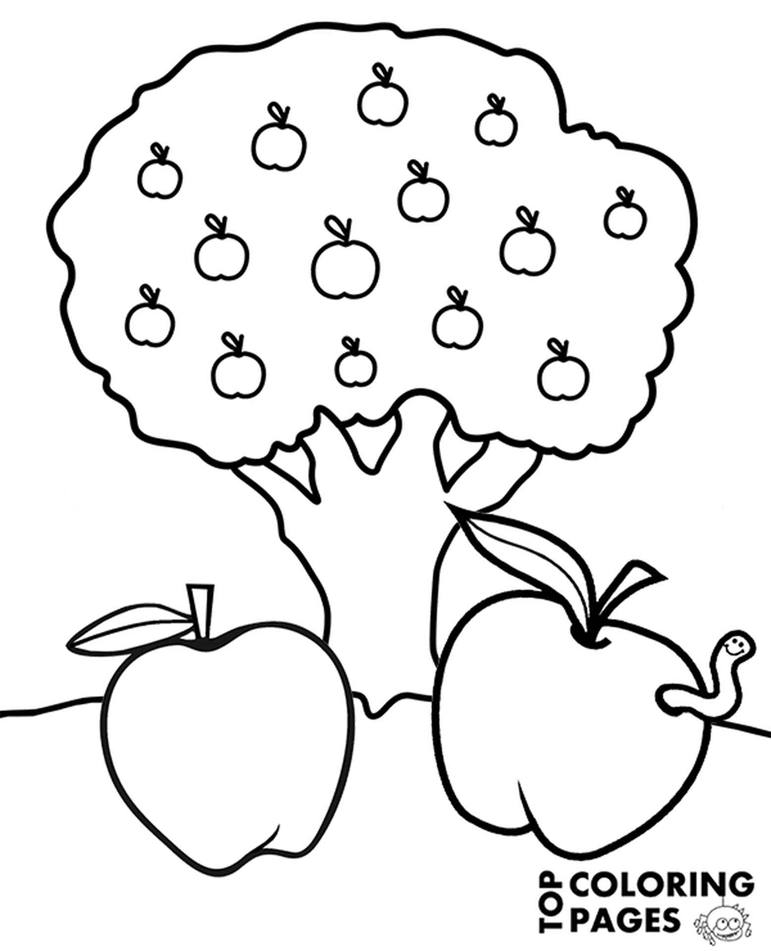 Apple Tree With Apples Coloring Page