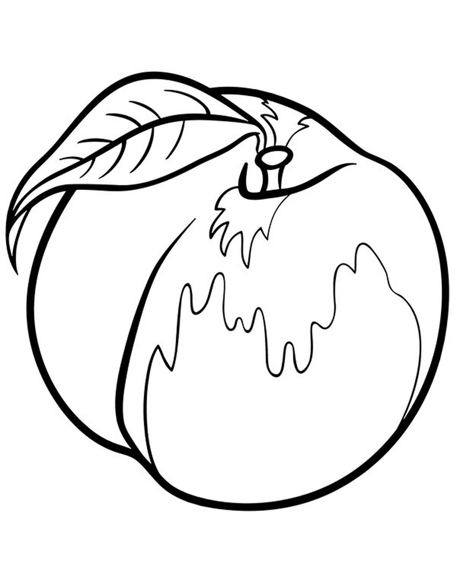 Beautiful Peach With A Leaf Coloring Page