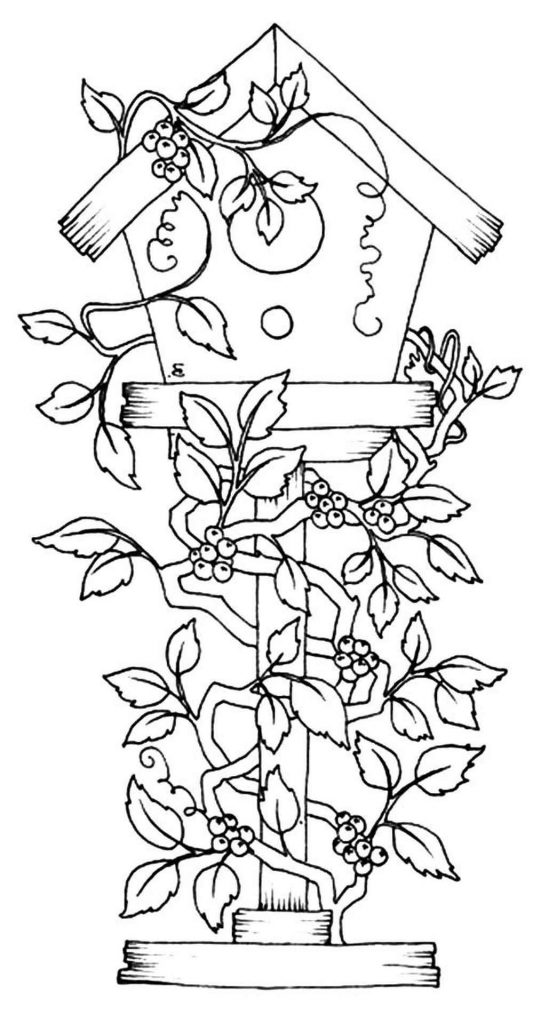 Birdhouse With Plants Coloring Page