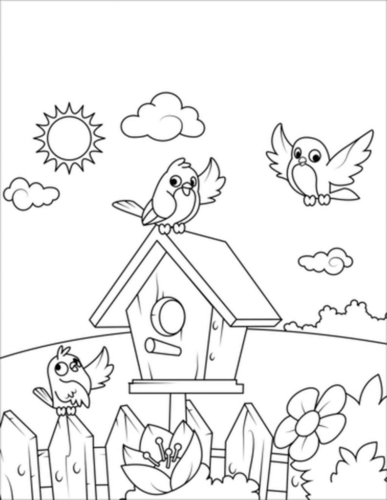 Birds Near A Birdhouse Coloring Page Supercoloring