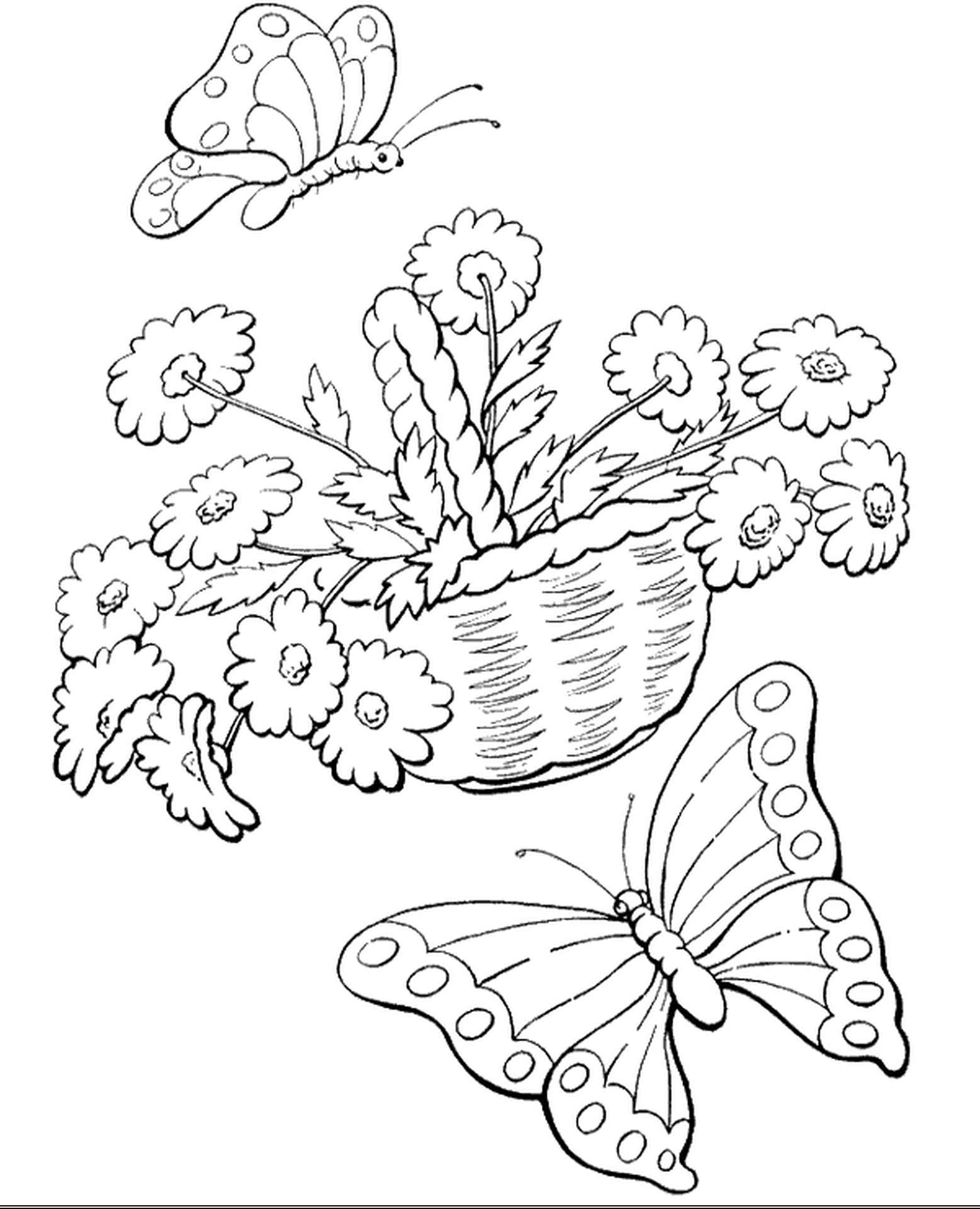 Butterflies And Flowers Coloring Picture