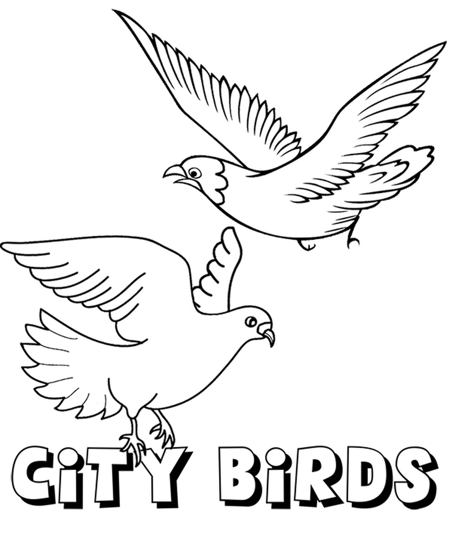 City Birds Pigeons Coloring Page
