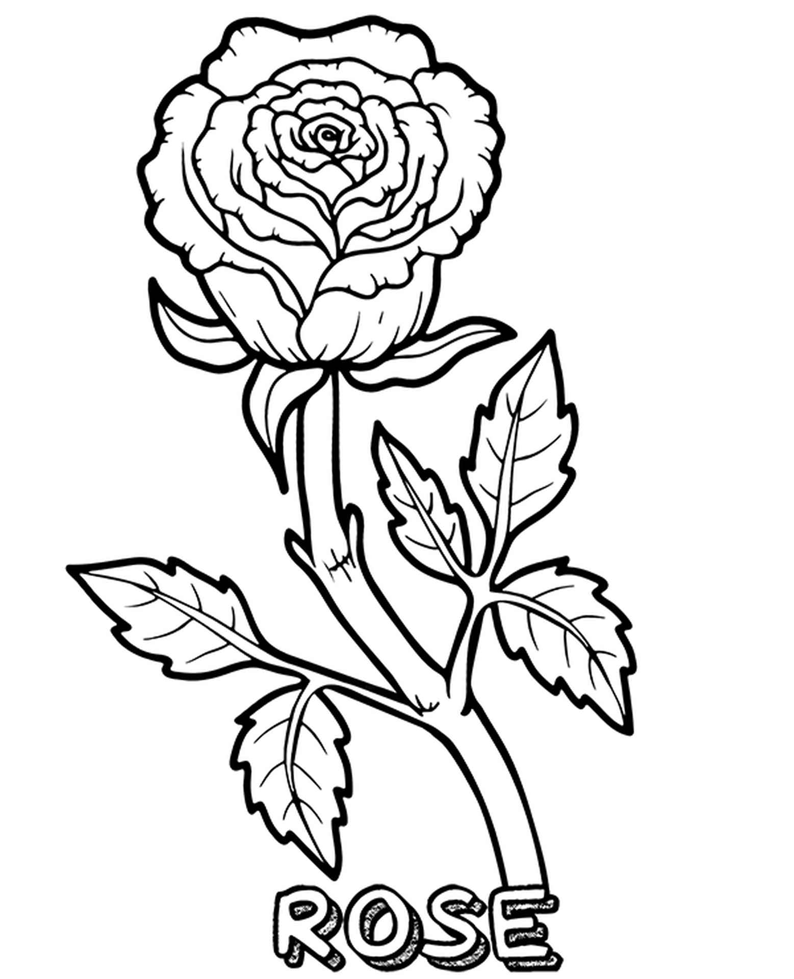 Coloring Page Of Royal Rose