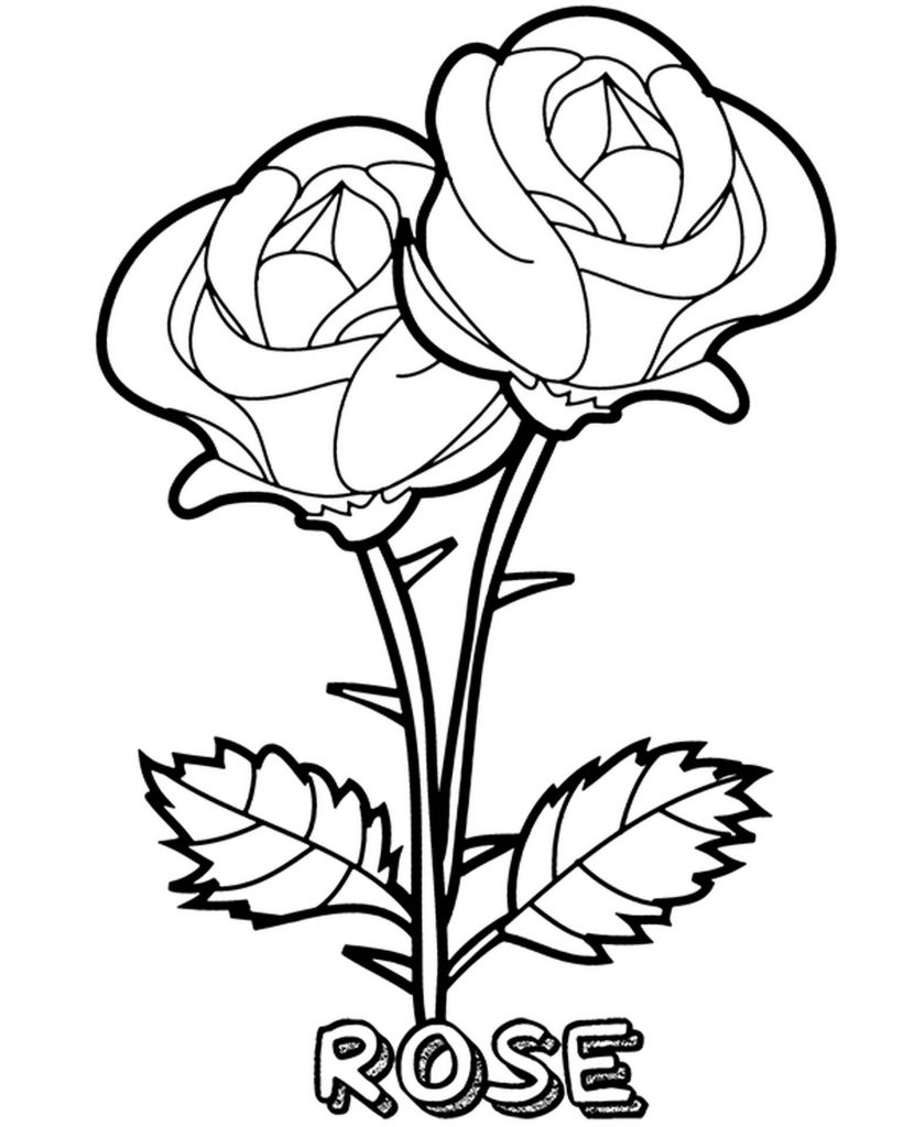 Coloring Page Two Wild Roses With Sharp Thorns