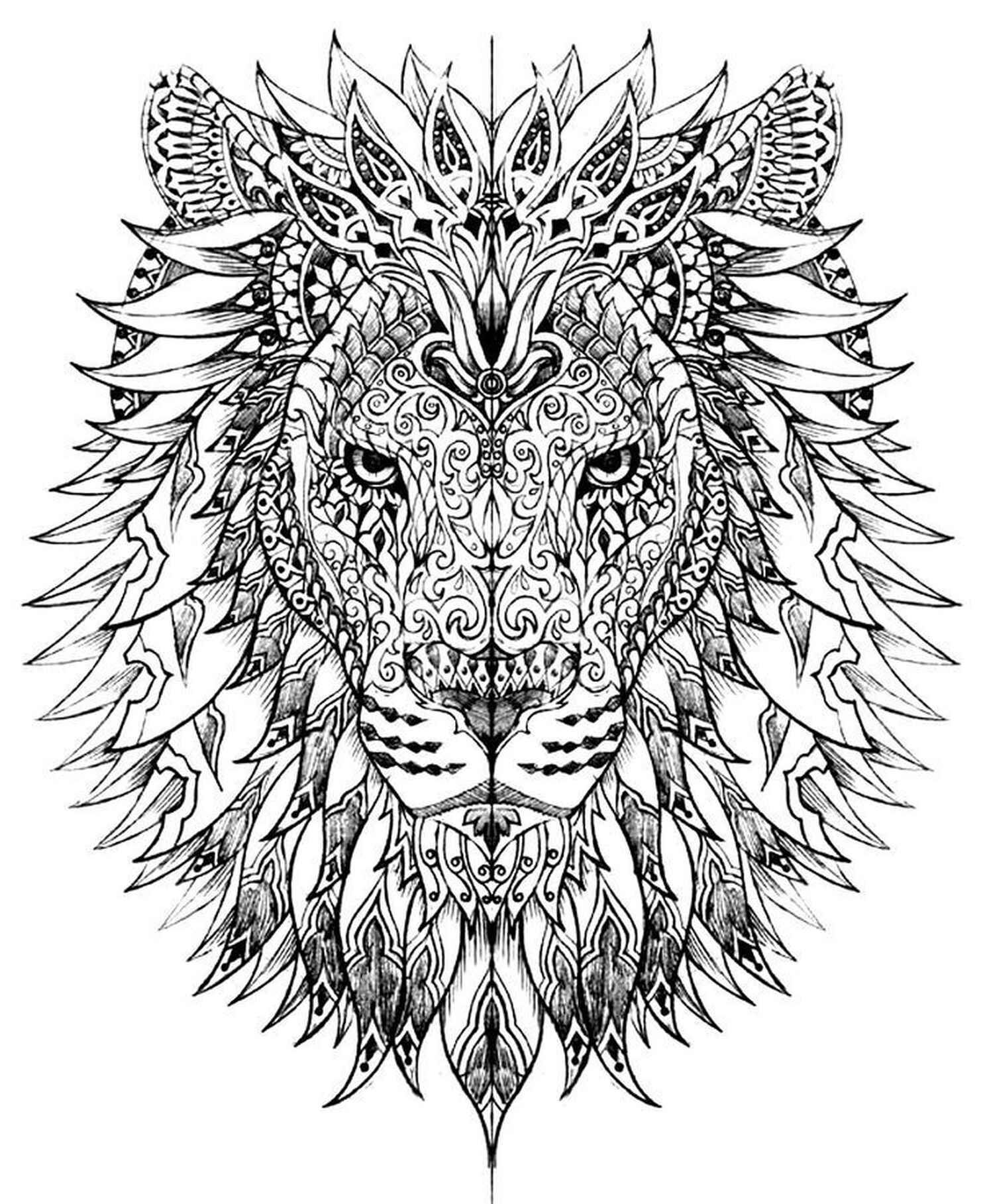 Cool Lion Coloring Page
