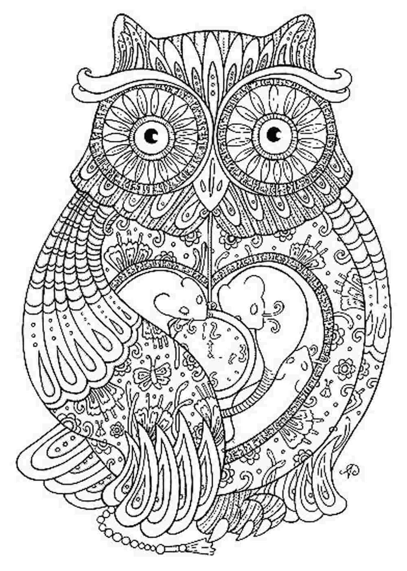 Detailed Owl To Color For Adults