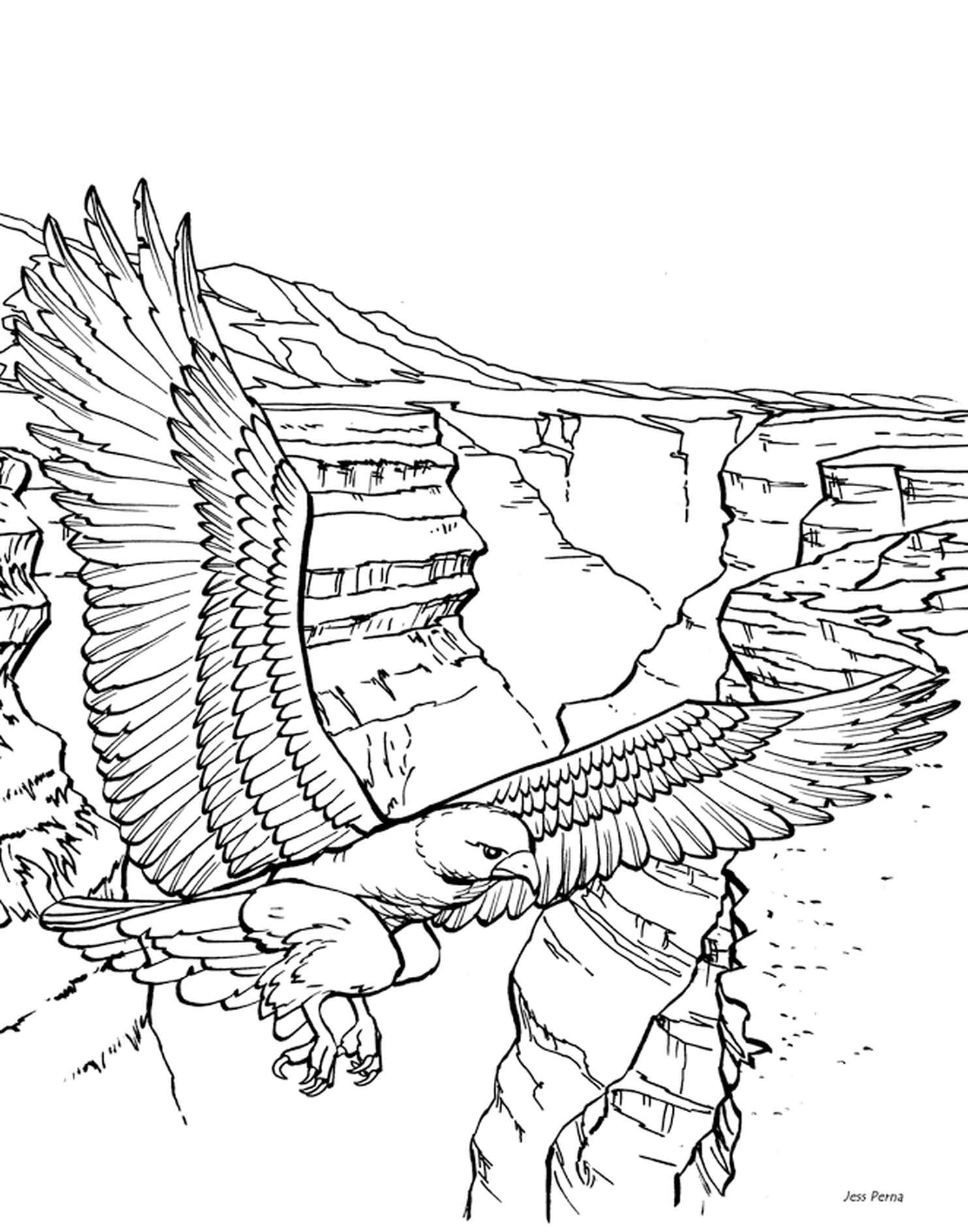Eagle In The Sky Coloring Page