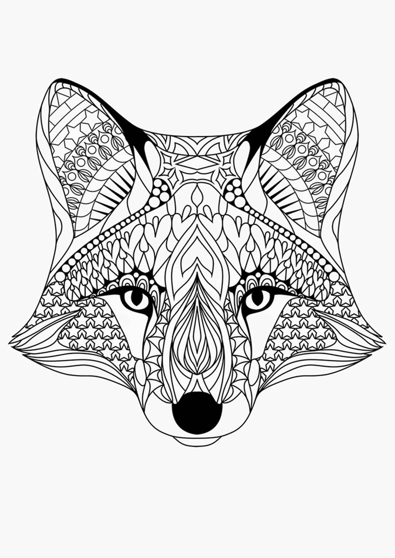Fox For Adults To Color