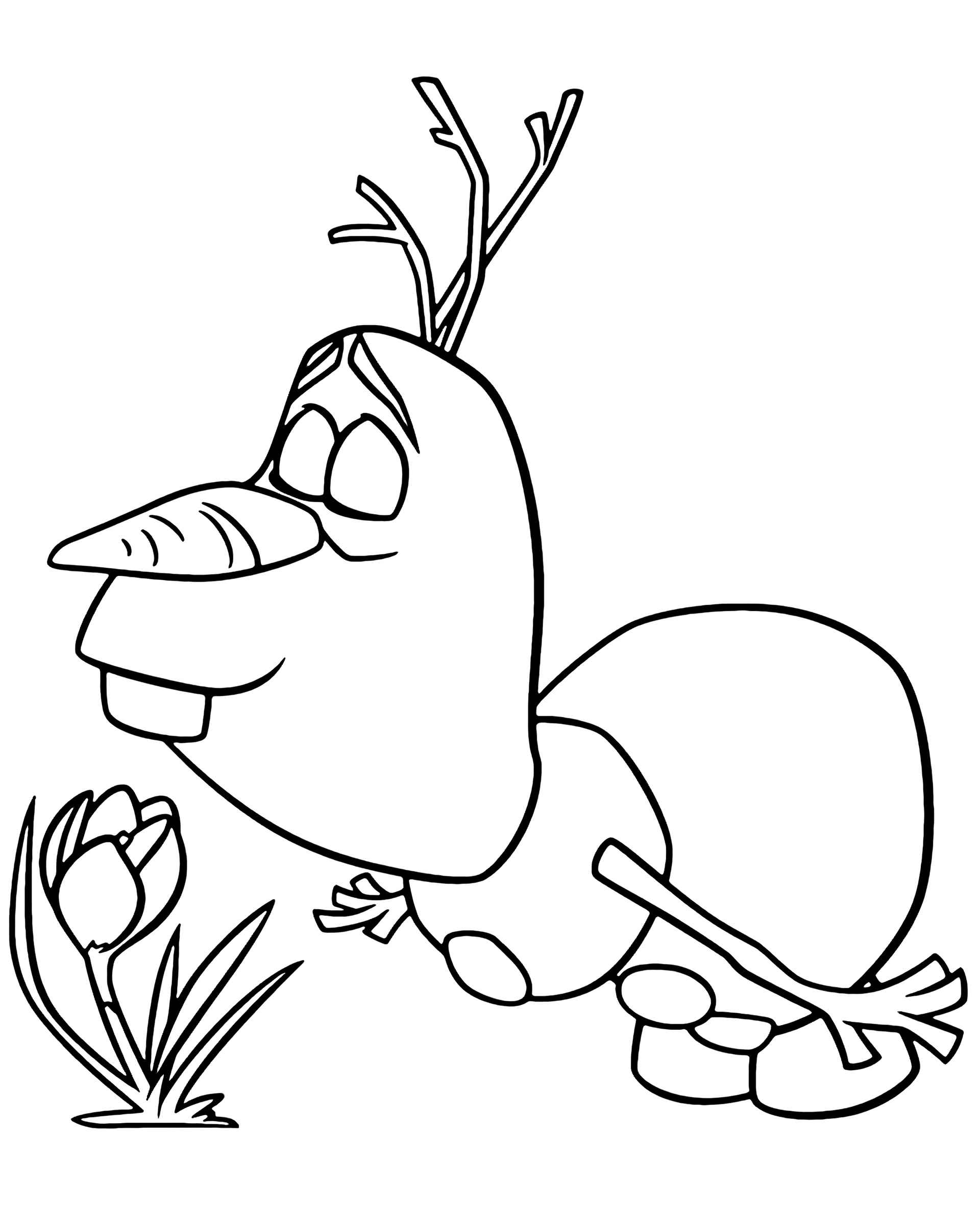 Frozen Olaf And A Flower Coloring Page