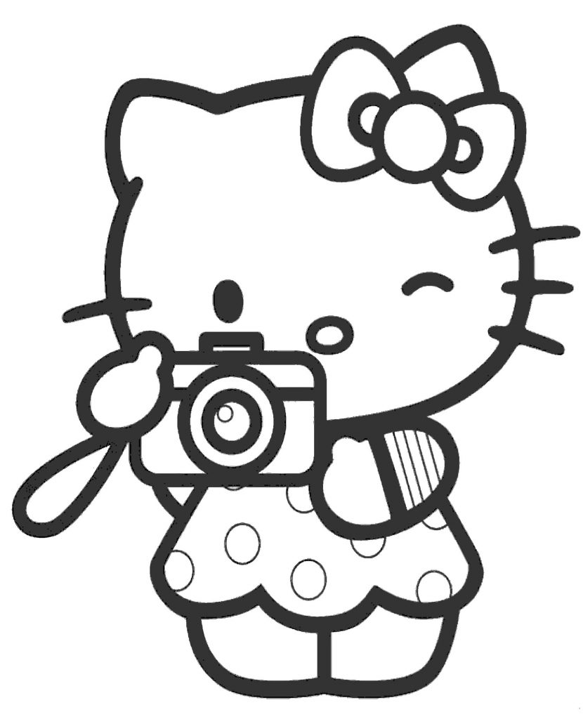 Hello Kitty Taking Pictures