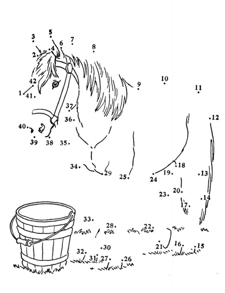 Horse And Bucket Of Water Coloring Page