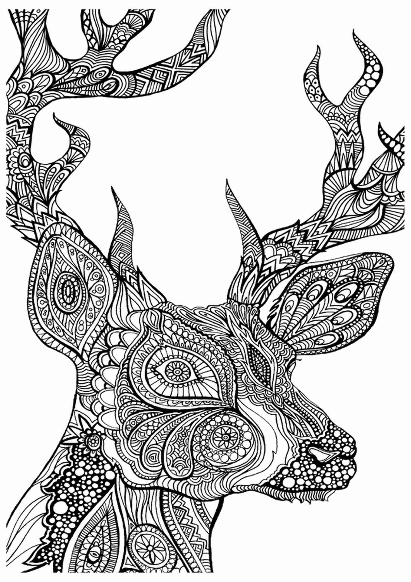 Intristic Designed Buck Coloring Page
