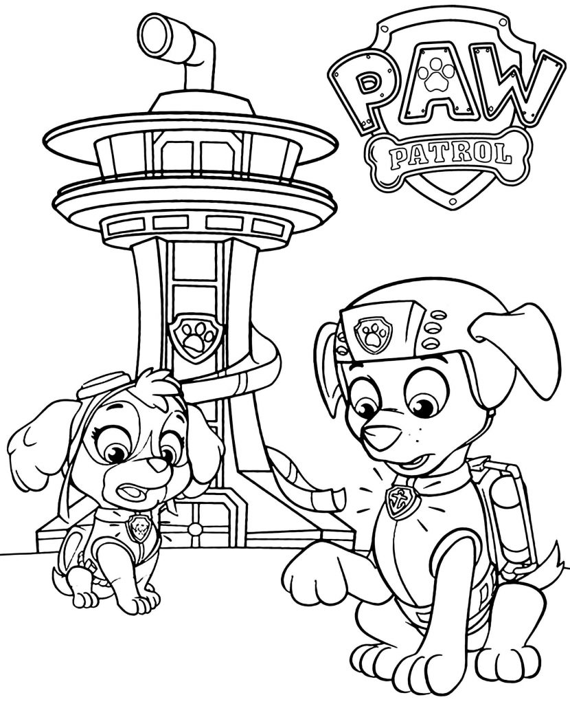 Paw Patrol Zuma And Skye And Wakeup Call