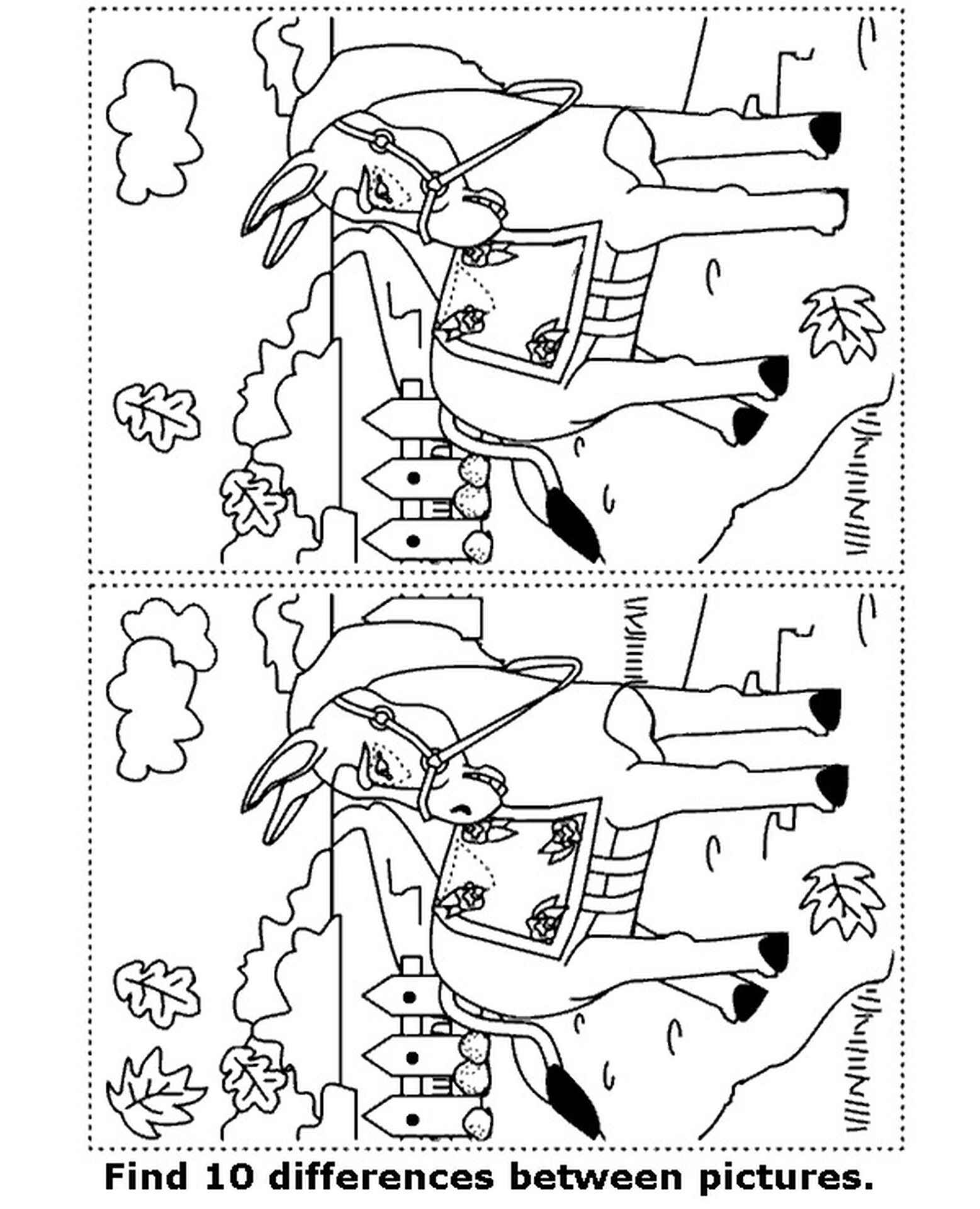 Picture Spot The Difference Donkey Coloring Page