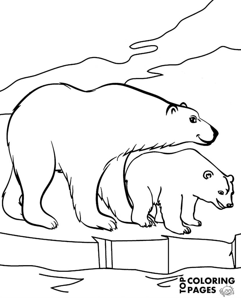 Polar Bears In Arctica Coloring Page