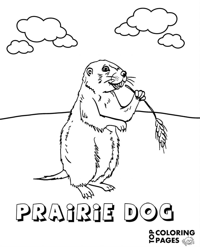 Prairie Dog Eating Coloring Page