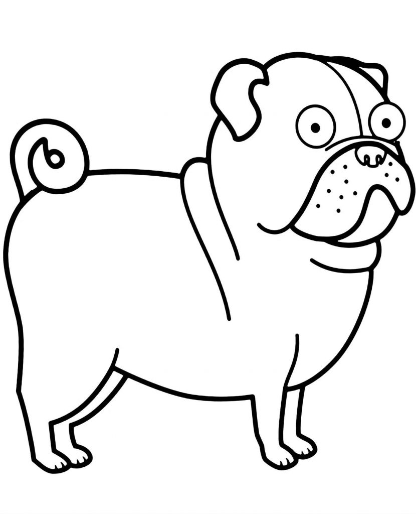 Pug Terrier Coloring Page For Kids