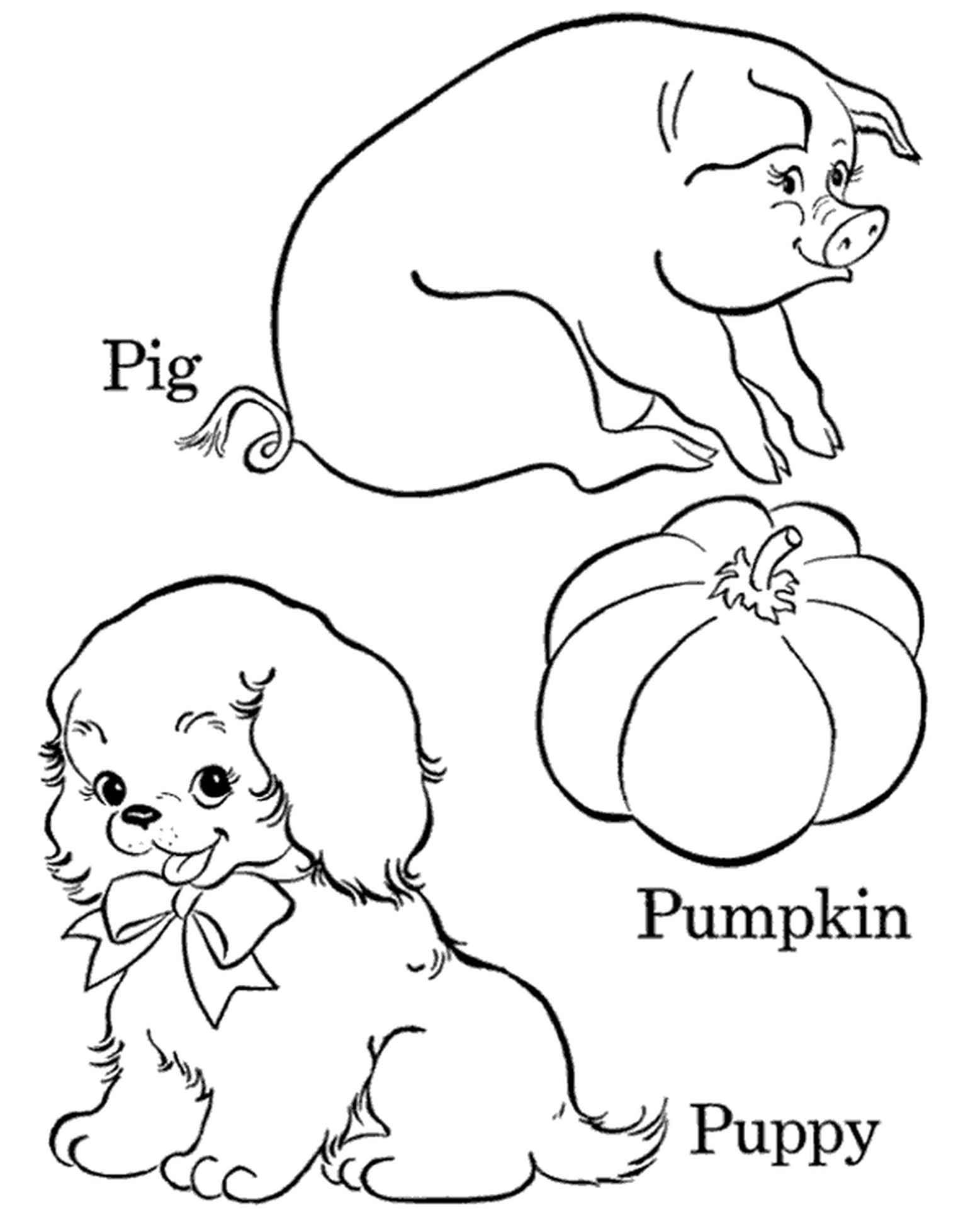 Puppy, Pig And Pumpkin Coloring Page For Kids