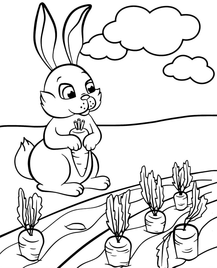 Rabbit Holding A Carrot Coloring Page