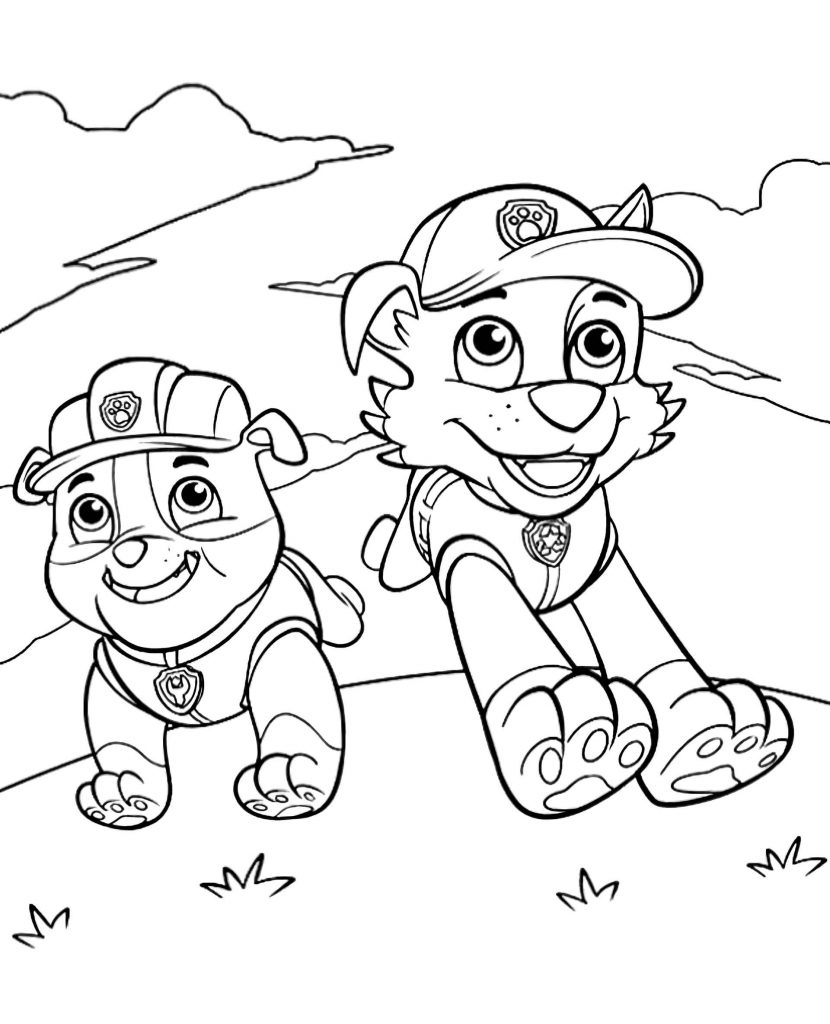 Rubble And Paw Patrol Rocky Run Together