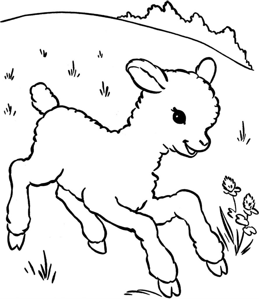 Simple Baby Sheep Coloring Page