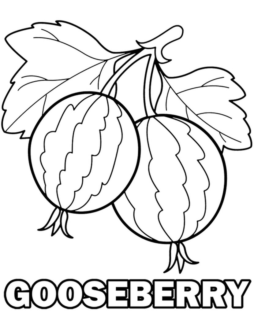 Simple Gooseberries Coloring Page