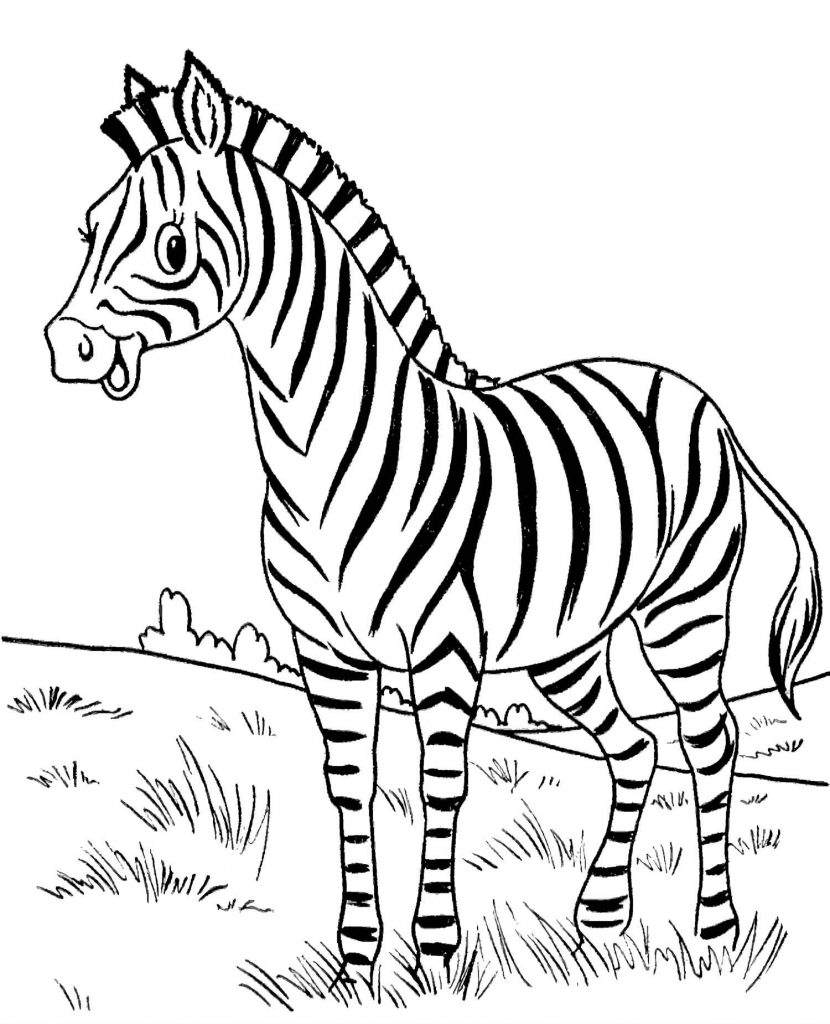 Smiling African Zebra Coloring Page