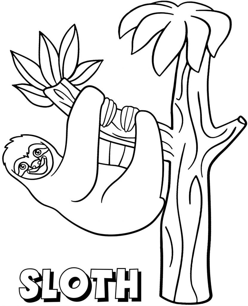 Smiling Sloth Hanging On The Tree Coloring Page