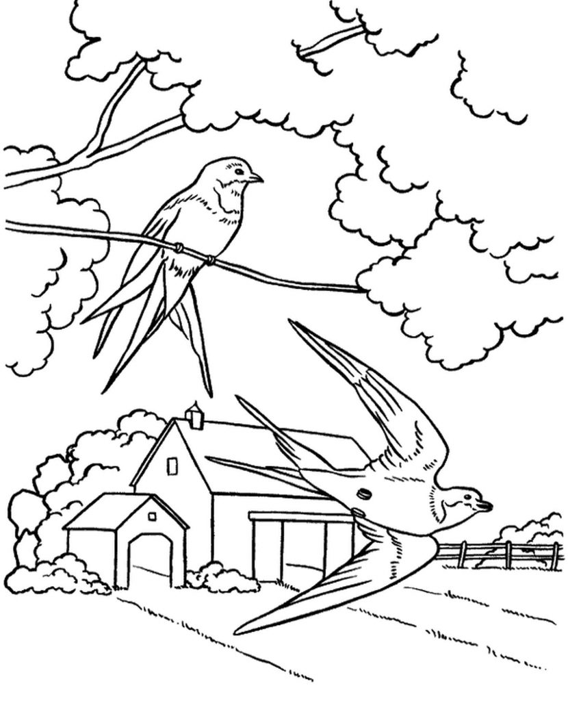 Spring In The Countryside Coloring Sheet