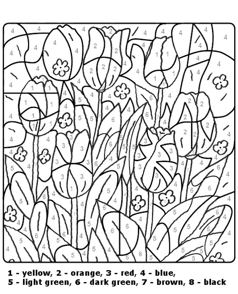 Tulips Color By Number Coloring Page