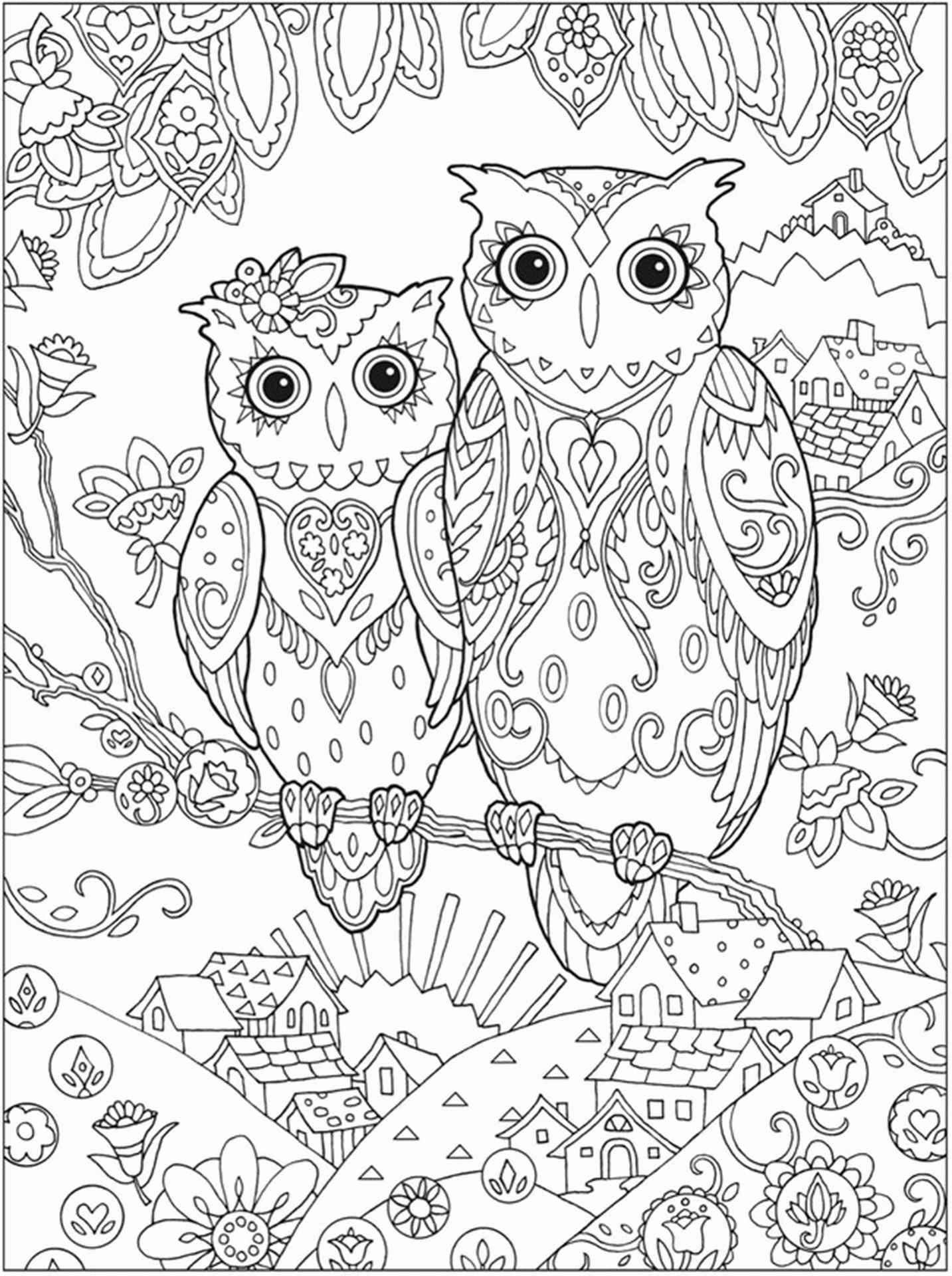 Two Owls Coloring Sheet For Adults