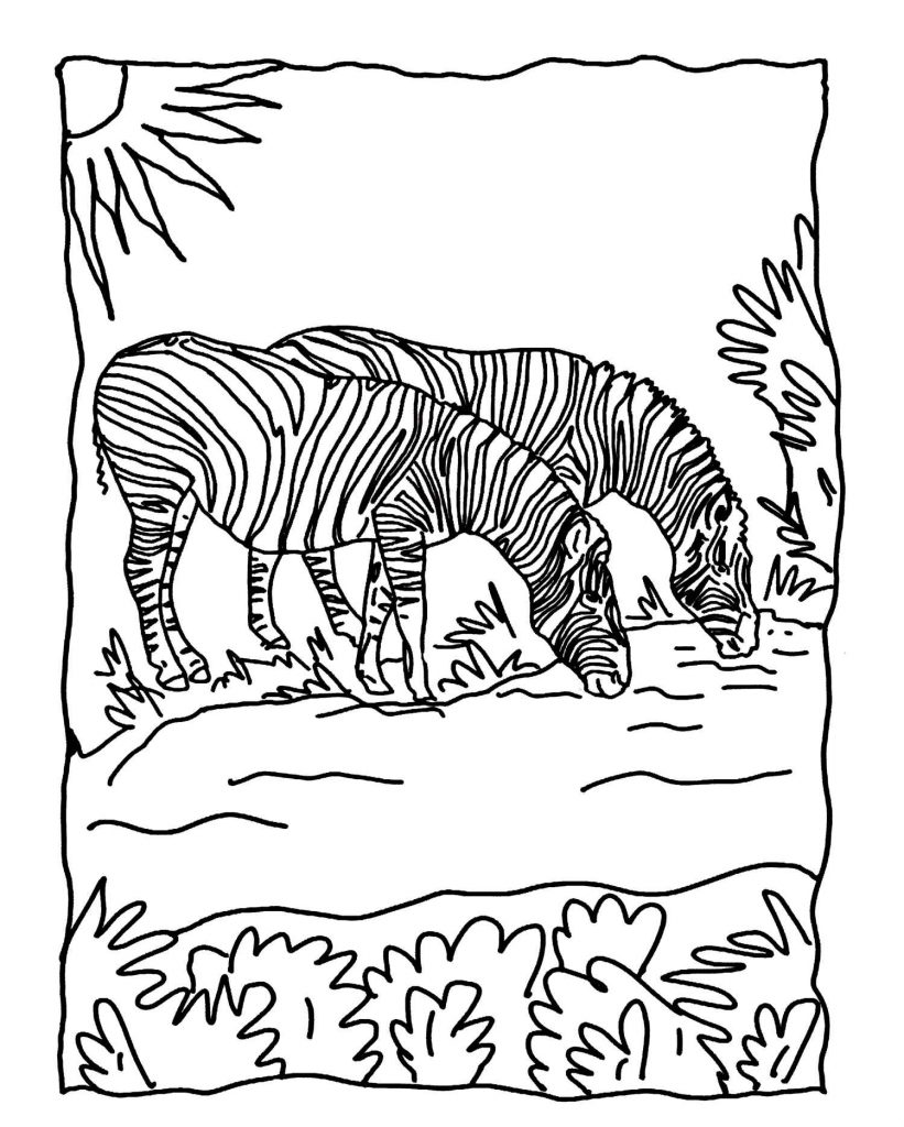 Zebras Drinking Water Coloring Page