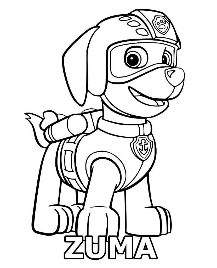 Zuma From Paw Patrol With Name